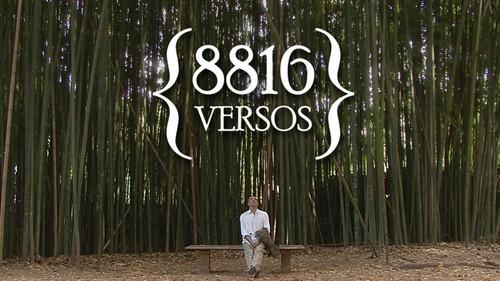 8816-versos-1140x641.jpg