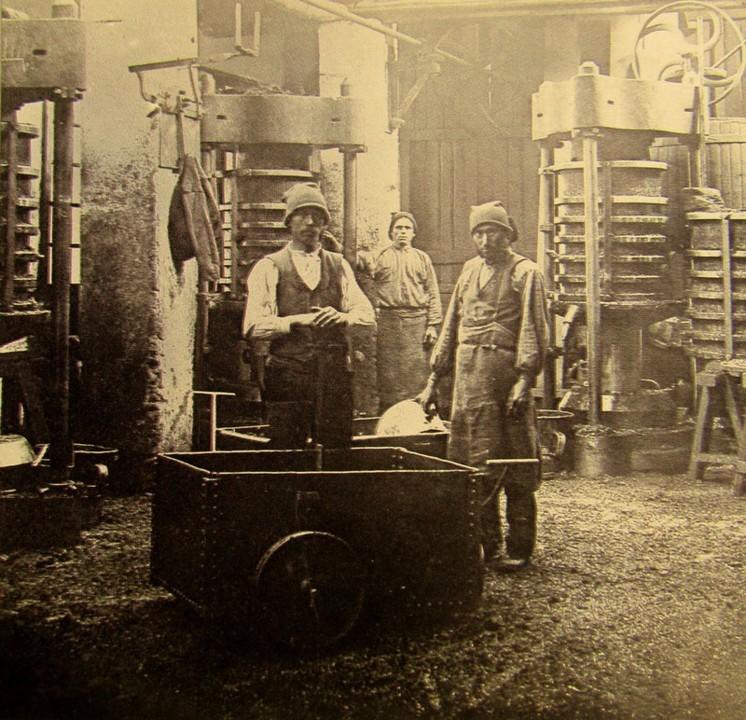 interior fábrica azeite alferrarede 1907 rodrigo