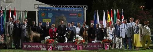 125 ECI Lisboa BIS.jpg