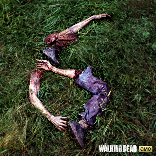 twd.png