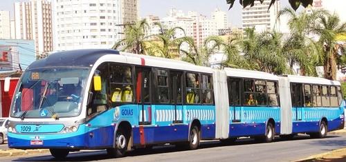 metrobus b.jpg