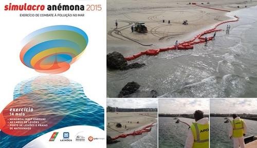 Simulacro Anémona 2015 c.jpg