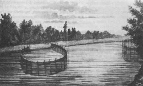 Dois caneiros no rio levantados com estacaria.jpg