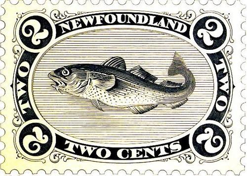 StampCodfishd