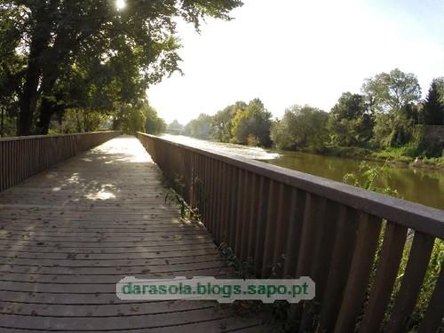 Margens rio Ave Trofa 02.JPG