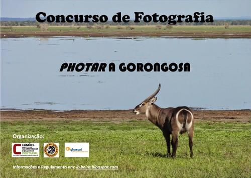 2014-10-05 - Concursode Fotografia Gorongosa.jpg