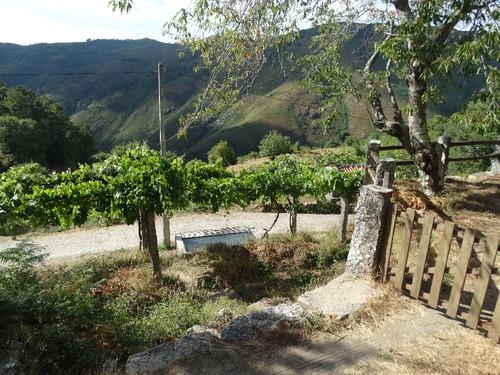 paisagem 16.JPG
