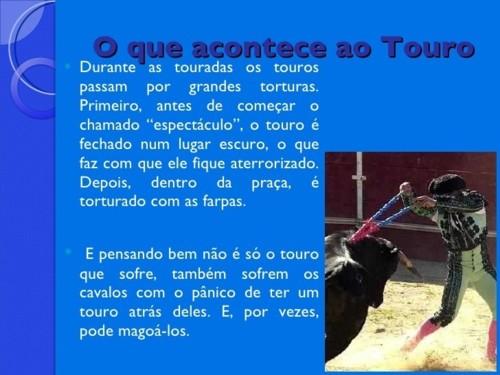 TOURADA3.jpg