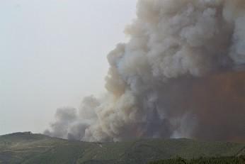 Incendio-Monchique-Martyna-Mazurek-4-Medium.jpeg