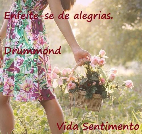 ENFEITE-SE DE ALEGRIAS.jpg