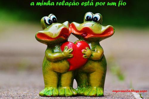 frogs-982809_640.jpg