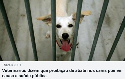 Cães 9Set2018.jpg