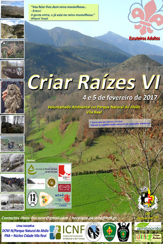 Poster Criar Raizes VI FNA 2017.jpg