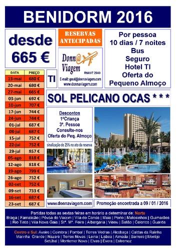 Sol Pelicano Ocas TI.jpg