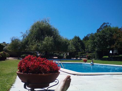 piscina, beira.png