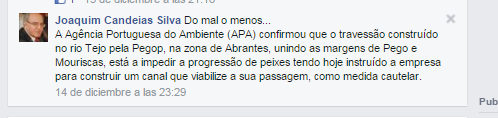 candeis silva.png