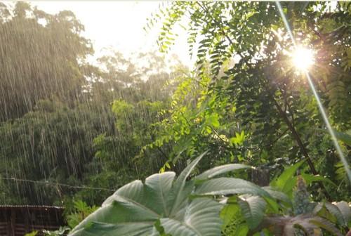 chuva e sol.jpg