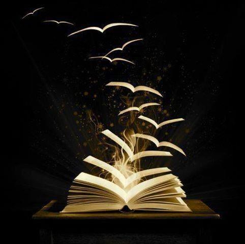 livro-e-pc3a1ginas-voando.jpg
