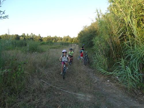bicicletas 5.JPG
