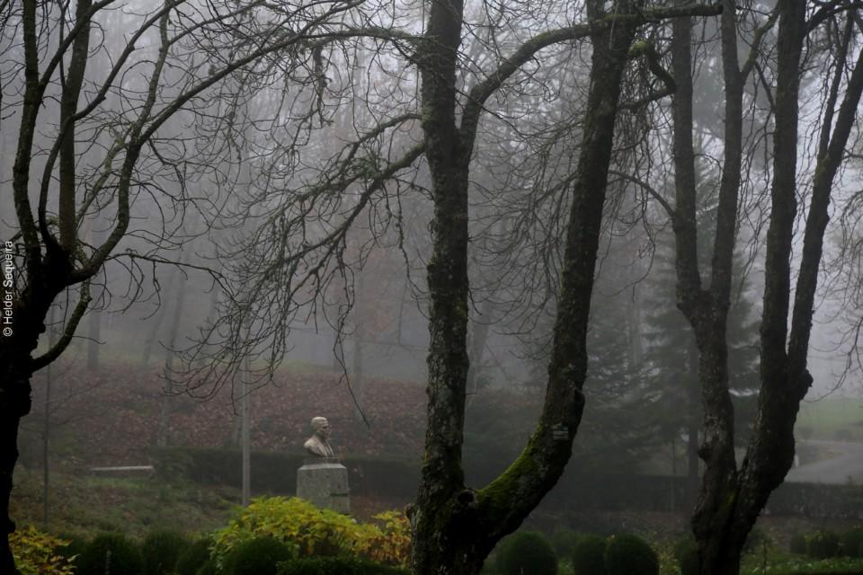 Nevoeiro no Parque da Saúde - foto Helder Sequeir