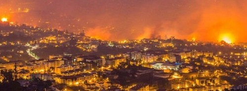 madeira_fire_august_2016_credit_EPA_f.jpg