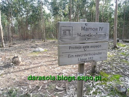 Trilho_Eiras_Famalicao_21.JPG