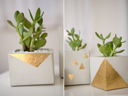 Amazing-DIY-cement-pots-with-Square-Shaped-with-Gr