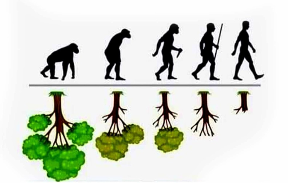 EVOLUÇÃO vs PROGRESSO.jpg