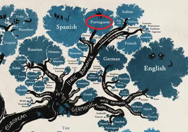 Árvore genelógica das línguas.png