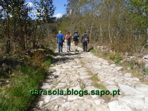 OlivFrades_Santiago_18.JPG
