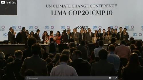 COP_5.jpg