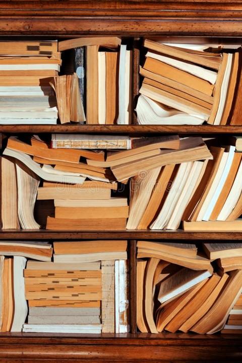 da-loja-diferente-do-fundo-biblioteca-de-muitos-li