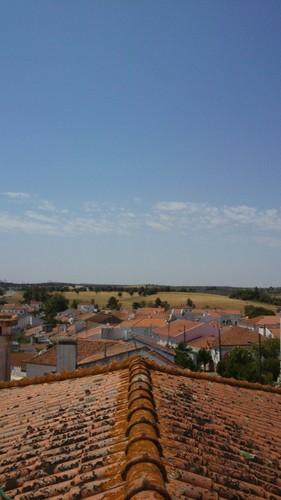 no telhado1.jpg