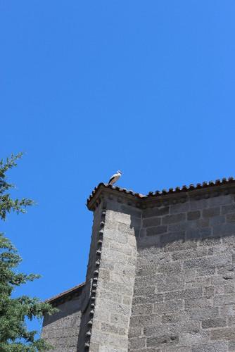 IMG_5628 Ávila