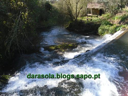 Gonde_Estarreja_12.JPG