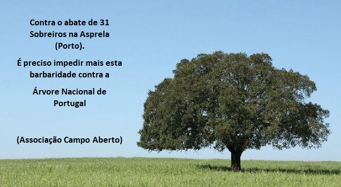 sobreiro.png
