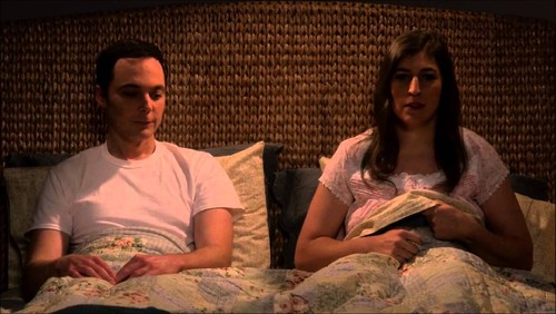 amy and sheldon.jpg