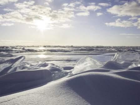 north-pole-arctic.jpg