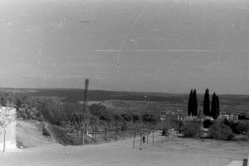 cemitério tó zé carvalho.jpg