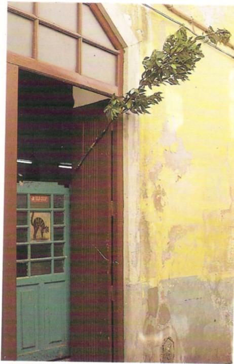 Tasca do Mija-Gato-1.jpg