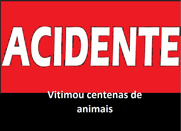 ACIDENTE.png