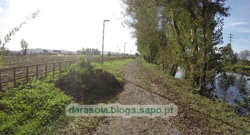 Margens rio Ave Trofa 12.JPG