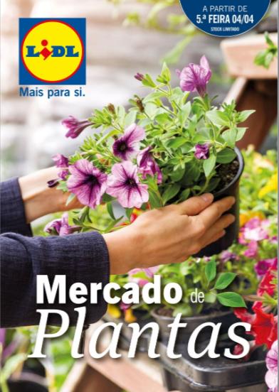 Lidl Plantas.PNG