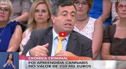 Quintino Aires gays cannabis.JPG