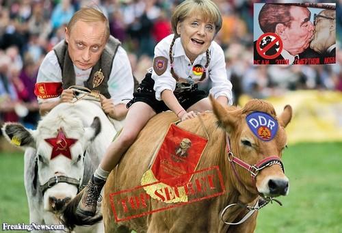 Vladimir-Putin-and-Angela-Merkel-Riding-Cows--1197