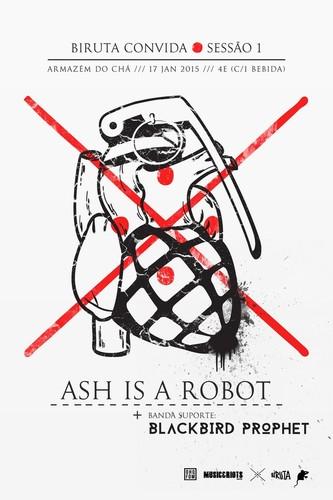 ashisarobot.jpg