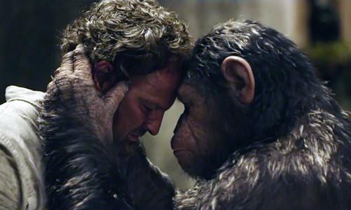planeta-dos-macacos-o-confronto-cena.jpg