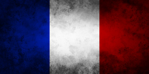 flag_of_france_by_ozelotstudios-d5llws1.jpg