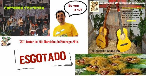 cartaz2014.png