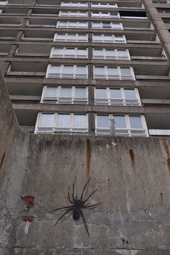 spider_Balfron Tower.jpeg